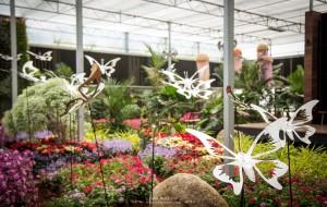 Dasada Gallery – ชมดอกไม้เมืองหนาวใกล้ๆ เขาใหญ่